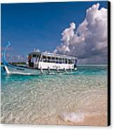 In Harmony With Nature. Maldives Canvas Print by Jenny Rainbow