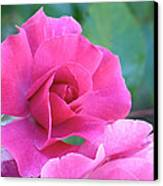 In The Pink Canvas Print by Rona Black