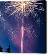 Independence Day 2014 1 Canvas Print by Alan Marlowe