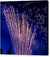 Independence Day 2014 17 Canvas Print by Alan Marlowe