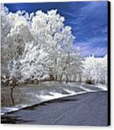 Infrared Road Canvas Print by Anthony Sacco