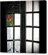 Inside Looking Out Canvas Print by Bobbi Feasel
