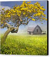 It's A Beautiful Day Canvas Print by Debra and Dave Vanderlaan