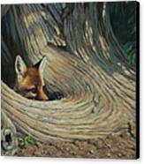 Fox - It's A Big World Out There Canvas Print