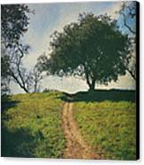 It's Time To Get Up That Hill Canvas Print