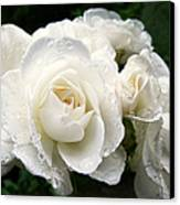 Ivory Rose Bouquet Canvas Print by Jennie Marie Schell