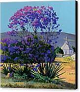 Jacaranda Holy Ghost Church In Kula Maui Hawaii Canvas Print