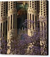 Jacaranda In Barcelona Canvas Print by Christine Burdine