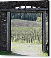 Jack London Ranch Winery Ruins 5d22132 Canvas Print