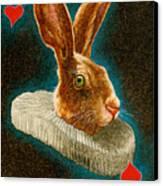 Jack Of Hearts... Canvas Print