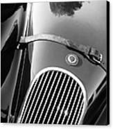 Jaguar Hood Emblem - Grille Canvas Print by Jill Reger