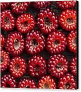 Japanese Wineberry Pattern Canvas Print