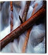 Jasper - Beauty Creek Logs Canvas Print by Terry Elniski