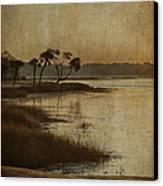 Jenkins Creek Dawn Canvas Print by Terry Rowe