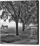 John Deer Tractor And The Avenue Of Oaks Canvas Print by Scott Hansen