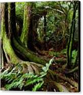 Jungle Trunks2 Canvas Print by Les Cunliffe