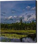 Just Another Day In Maine Canvas Print