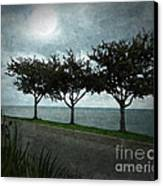 Just Another Gloomy Day Canvas Print