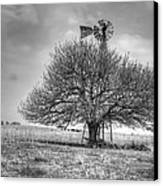 Just Plain Kansas Canvas Print by JC Findley
