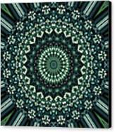 Kaleidoscope 10 Canvas Print by Tom Druin