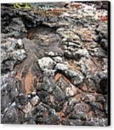Kauai Seascape II Canvas Print by Maxwell Amaro
