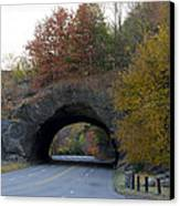 Kelly Drive Rock Tunnel In Autumn Canvas Print by Bill Cannon