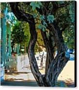 Key West Beauty Canvas Print by Claudette Bujold-Poirier