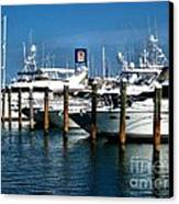 Key West Marina Canvas Print by Claudette Bujold-Poirier