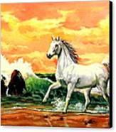 Kindred Spirit Canvas Print by W  Scott Fenton
