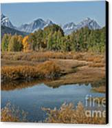 Kiss Of Fall In The Grand Tetons Canvas Print by Sandra Bronstein