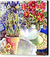 Kitchen Primrose Canvas Print by Ann  Nicholson
