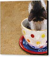 Kitty Cat Time Out Canvas Print by Andee Design