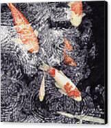 Koi In The Rain Canvas Print