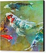 Koi Kollection Canvas Print