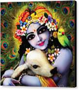 Krishna Gopal Canvas Print