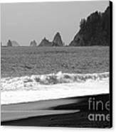La Push Beach Black And White Canvas Print by Carol Groenen