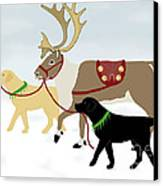 Labrador Dogs Lead Reindeer Canvas Print