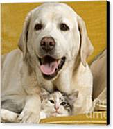 Labrador With Cat Canvas Print