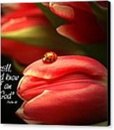 Ladybug And Tulip Canvas Print by Linda Fowler