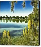 Lake Mindon Campground California Canvas Print by Bob and Nadine Johnston