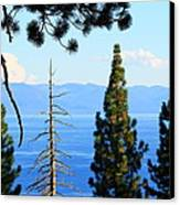 Lake Tahoe Tranquil Canvas Print by Saya Studios