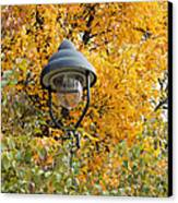 Lamp In The Autumn Leaves Canvas Print