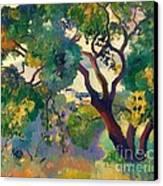 Landscape At St Tropez  1 Canvas Print by Pg Reproductions
