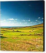 Landscape At Summer Canvas Print