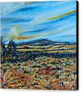 Landscape Sunflowers Field  Canvas Print by Drinka Mercep