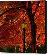 Lantern In Autumn Canvas Print