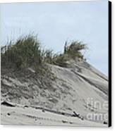 Large Dunes Canvas Print by Cathy Lindsey