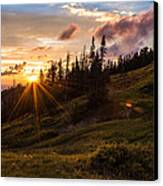 Last Light At Cedar Canvas Print by Chad Dutson