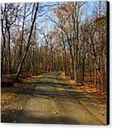 Late Fall At Cheesequake State Park Canvas Print