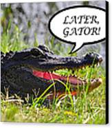 Later Gator Greeting Card Canvas Print by Al Powell Photography USA